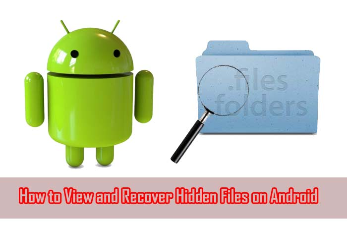 How to View and Recover Hidden Files on Android?